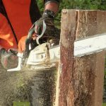 Chainsaw PPE Selection